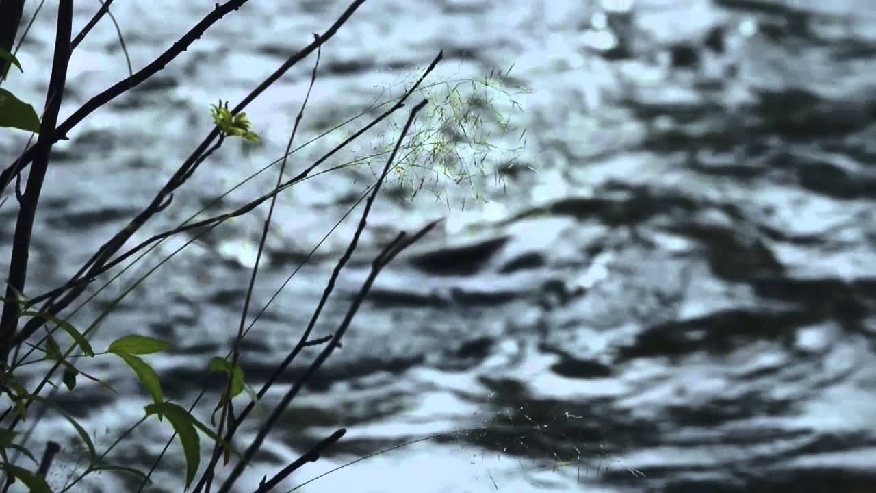 ARKTISET VEDET Season 3 KONNEVEDEN KOSKET - YouTube