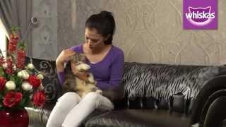 Kittypedia Episode 2 – Partner Ngedate Nina Zatulini