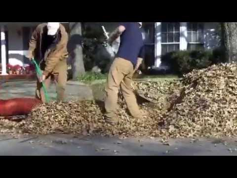 *Bag-less* Leaf Cleanup with Texas Organic Lawncare