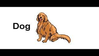 ИЗУЧАЕМ животных на английском языке Animals in English Развивающие мультики Обучающее видео