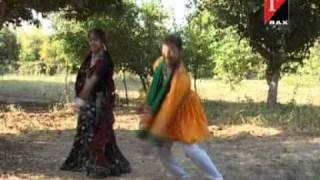 Gujarati Songs - Mane Painavo Pant Suit Walo - Rudi Rabaran