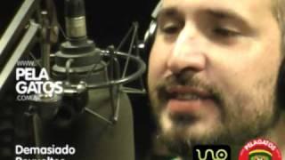 Demasiado Revueltos - Reggae en PelaGatos - Resistencia