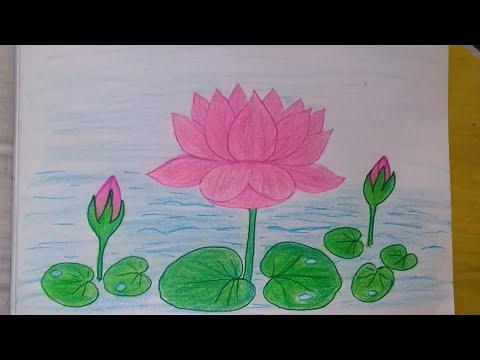 How To Draw Beautiful Lotus Flower Muggulu Easy Simple Rangoli Kolam Latest Rangavalli Drawing Hayley Magazine