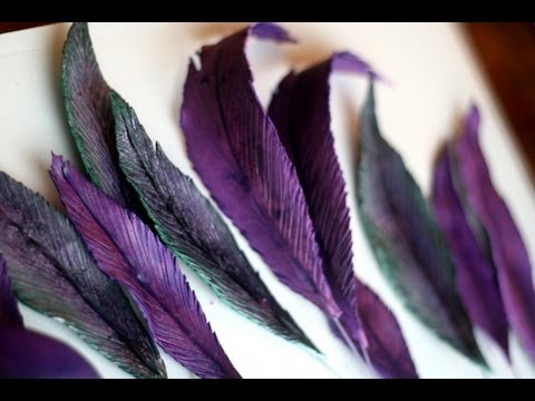 How to Make a Sugar Feather; A McGreevy Cakes Tutorial