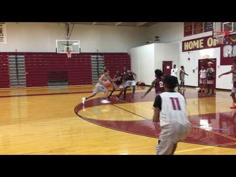 Tyner Academy 2018-2019 basketball video