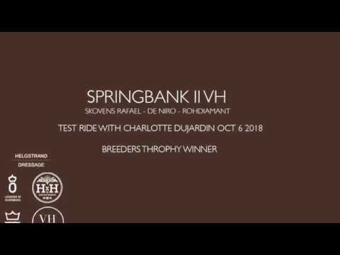 SPRINGBANK II VH - with Charlotte Dujardin in the final of Breeders Trophy 2018