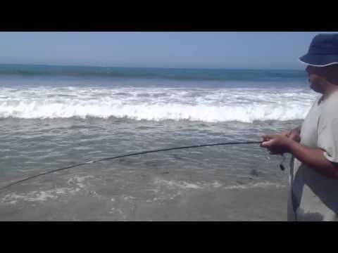 SaMo surf fishing