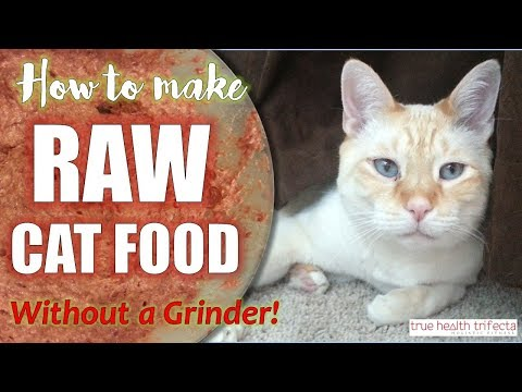 How To Make Raw Cat Food WITHOUT A Grinder! (RECIPE) - Homemade Cat Food / Cat Lady Fitness
