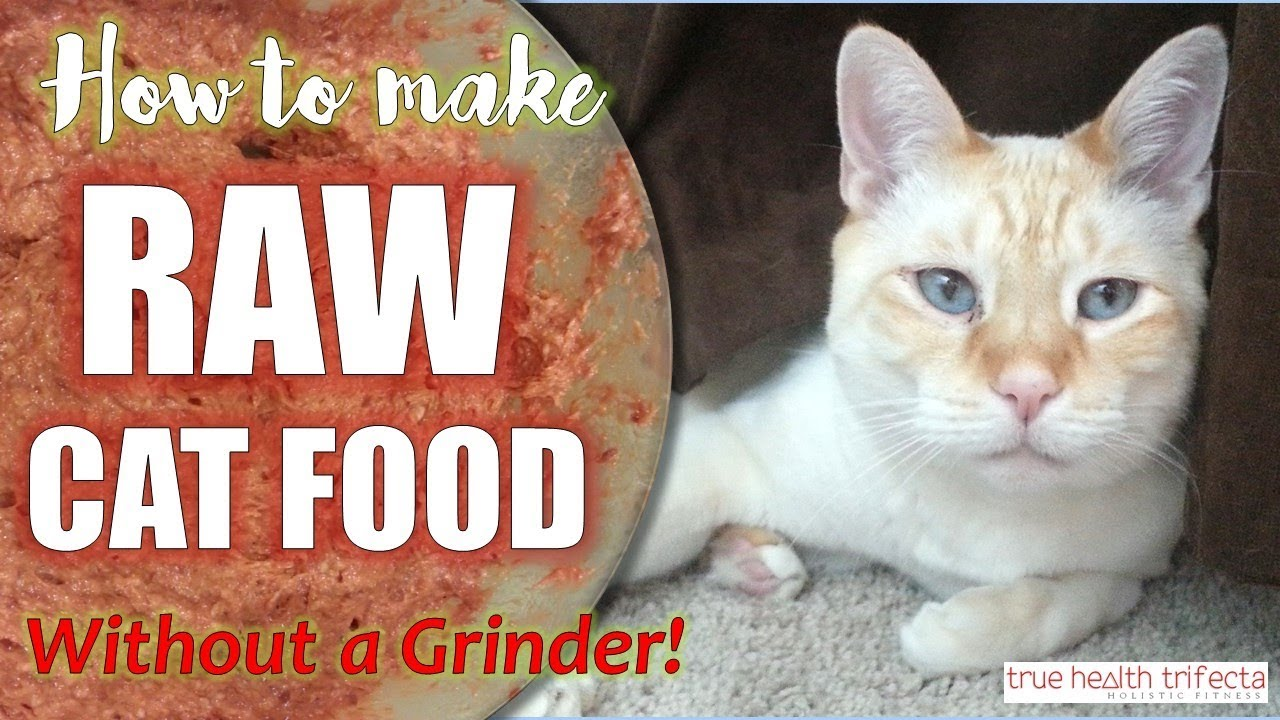 How To Make Raw Cat Food Without A Grinder Recipe Homemade Cat Food Cat Lady Fitness