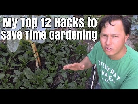 My Top 12 Hacks to Save Time Vegetable Gardening