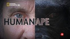Човекът и маймуната