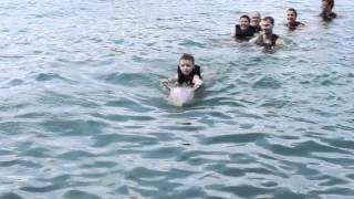 Dolphin Cove, Jamaica; Promotional Video of Program Options