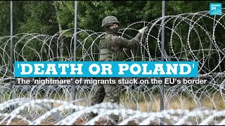 'Death or Poland': The 'nightmare' of migrants stuck on the EU's border • FRANCE 24 English