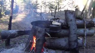 Выживание в лесу Балаган костер Нодья Как отпугнуть медведя Охота Рыбалка Выживание в тайге Сибирь
