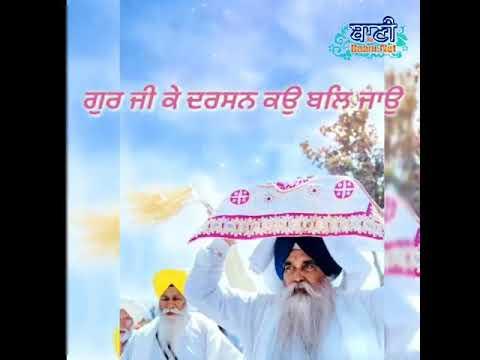 Dhan-Sri-Guru-Granth-Sahib-Ji-Gurpurab-Short-Clips-What-#39-S-App-Status