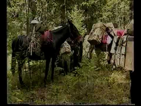 Horse Sense a Guide to Minimum Impact Horse Camping7