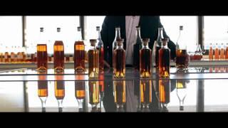 Cognac POLIGNAC - Présentation