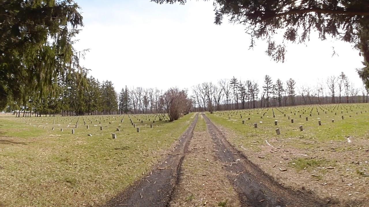 Craig Colony Cemetery
