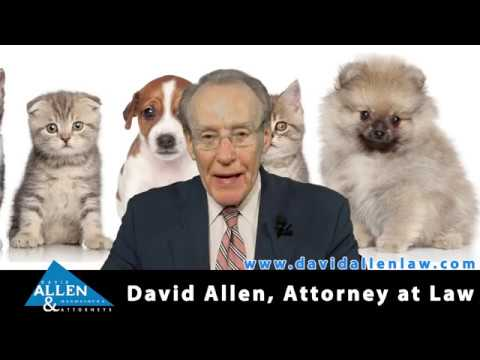 "David Allen Legal Tuesday: Woman Finds She ""Rented"" a Pet Instead Buying It"
