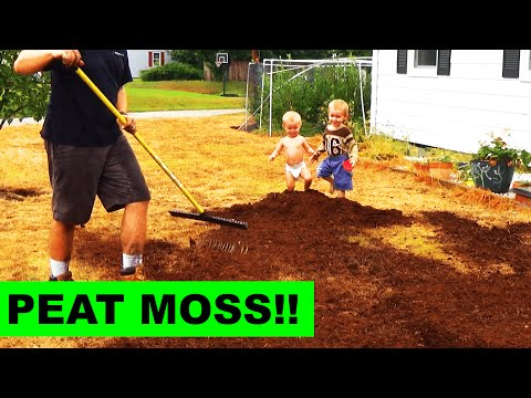 Top Dressing your Grass Seed with Peat Moss
