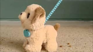 Hasbro - Furreal Friends - Pax, My Poopin Pup - B3527 - Australia