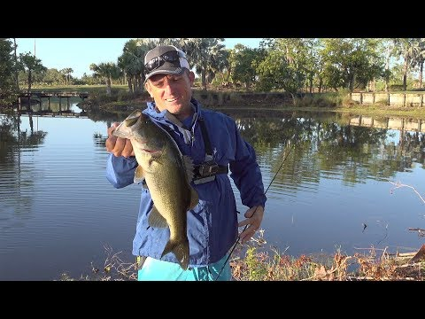 ALL TIME FAVORITE BASS LURE- NEVER FAILS!!! PLUS EPIC POND ADDITIONS!!!