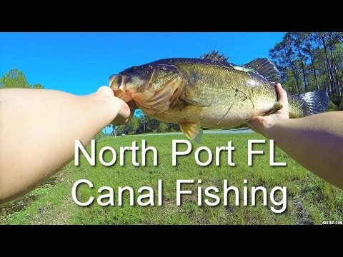 Bass Fishing In North Port Florida Canals