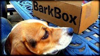Happy HOWL-O-WEEN   BarkBox October 2014 Unboxing