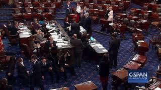 Sen. Duckworth with her baby on Senate floor (C-SPAN)