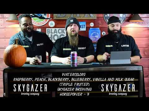 Craft Beer Review of Watercolors Raspberry, Peach, Blackberry, Blueberry from Skygazer Brewing Co