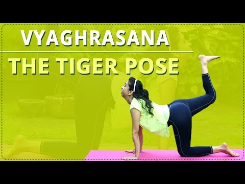 learn how to do the tiger pose  vyaghrasana  simple yoga