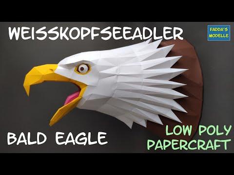 weisskopfseeadler---bald-eagle---low-poly-papercraft