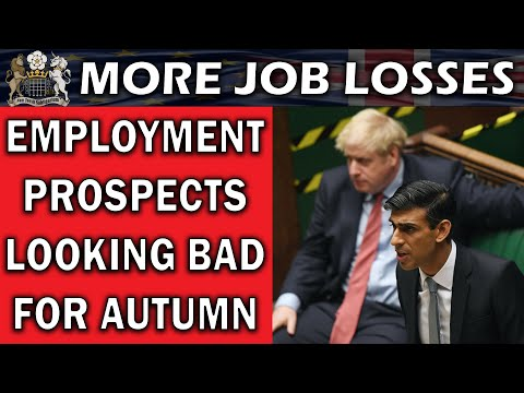Job Productivity Suffers Publish-Election