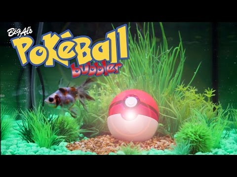 We Built A Pokéball Aquarium Bubbler!   BigAlsPets.com