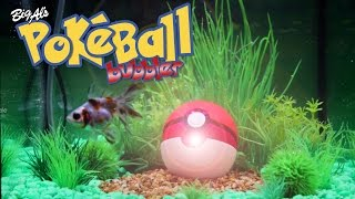 We Built a Pokéball Aquarium Bubbler! | BigAlsPets.com