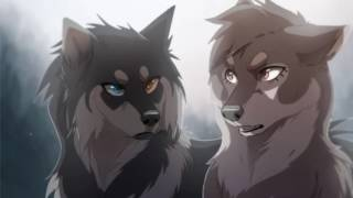 🐺We own the night🐺: Anime Wolf Song