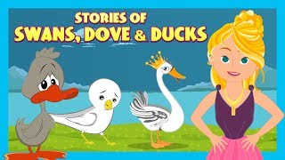 Stories Of Swans, Dove &  Duck |Animated Stories For Kids|Moral Stories and Bedtime Stories For Kids