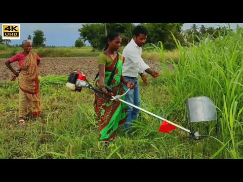 Village Girl with Amazing Brush Cutter MACHINE in india