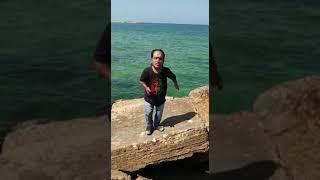 علوش على شاطيء البحر فوق الصخور يلعب ويمرح