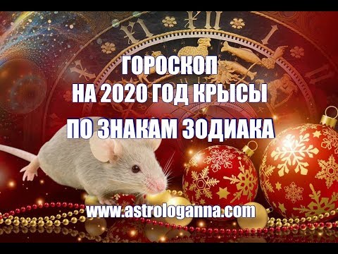 ГОРОСКОП НА 2020 ГОД КРЫСЫ ПО ЗНАКАМ ЗОДИАКА