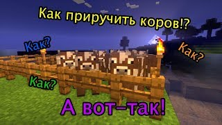 """Майнкрафт - Как приручить и размножить коров - """"Для новичков""""№4"""