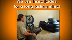 Get Rid of Bed Bugs, Termites, & Rodents Now | Pest Control Baltimore
