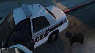 GTA V LSPDFR : Black officer & Big Berm
