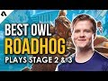 Best Overwatch League Roadhog Plays | OWL Stage 2 & 3