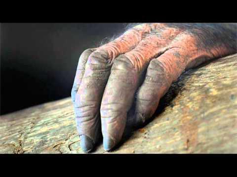 La leyenda del charro negro - 3 part 2