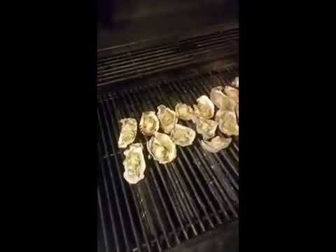 Catch and Cook Gulf Coast Oysters