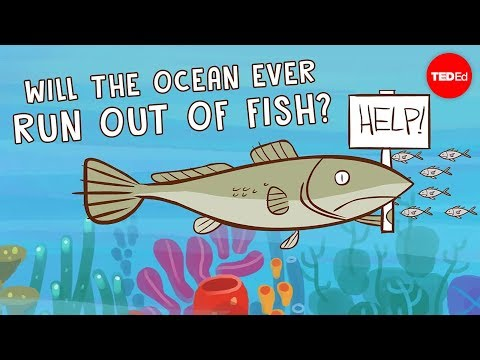 Will the ocean ever run out of fish? - Ayana Elizabeth Johns