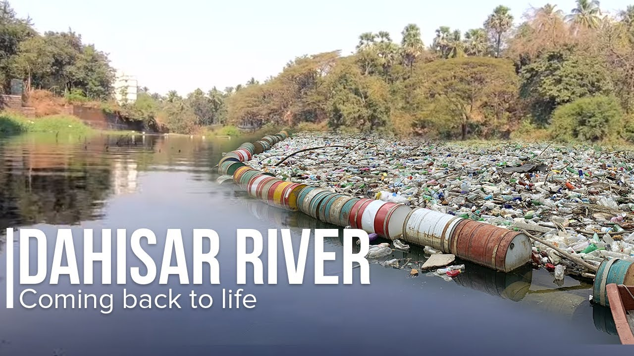 COMING BACK TO LIFE: The Art of Living Revives Dying Mumbai River | Dahisar River Project
