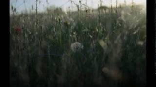Radiohead - Lull