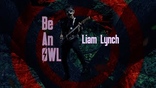 Watch Liam Lynch Be An Owl video
